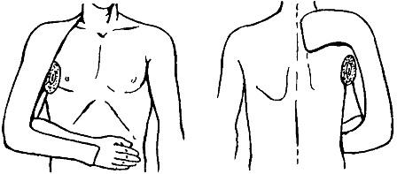 плечо 1